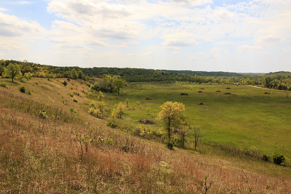 Minnesota seasons river terrace prairie sna for 10 river terrace